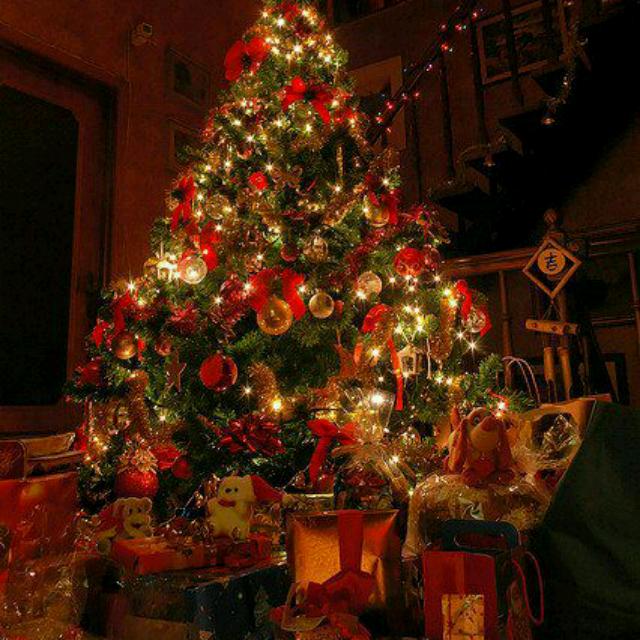 祝你圣诞快乐伴奏 酷我K歌 酷我音乐图片